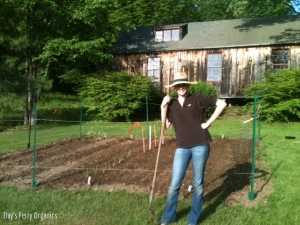 Just planted the first vegetables on the farm