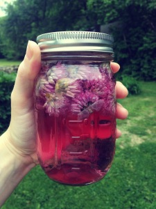 Beautiful rose vinegar, ready for straining and serving.