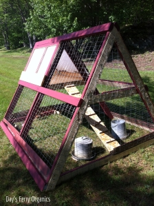 Our first coop, a modest design for about four hens.